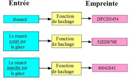01C2000007271254-photo-hachage-de-fichiers.jpg