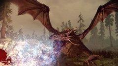 00f0000002209834-photo-dragon-age-origins.jpg