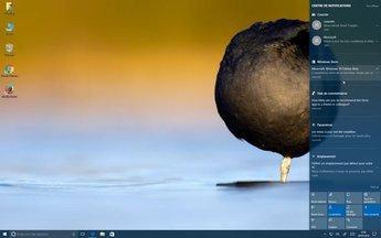 0159000008510000-photo-windows-10-anniversary-update-notifications-1.jpg