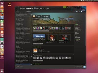 0190000005500273-photo-steam-sur-linux.jpg