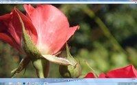 00c8000006692364-photo-asuspq321-photo-nokia808-100-pour-100-en-full-hd.jpg