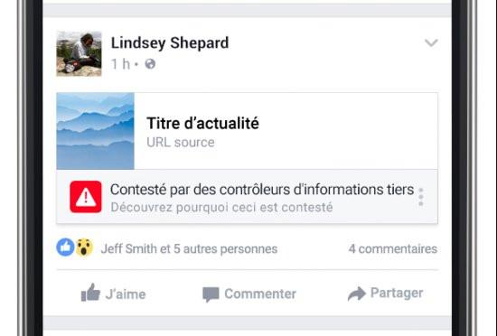0226000008666402-photo-fact-checking-facebook-france.jpg