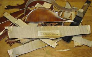 012C000004857682-photo-violon-d-truit.jpg