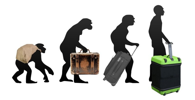 0320000007774047-photo-fugu-luggage.jpg