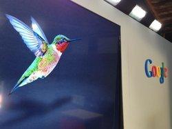 00fa000006669320-photo-google-hummingbird.jpg