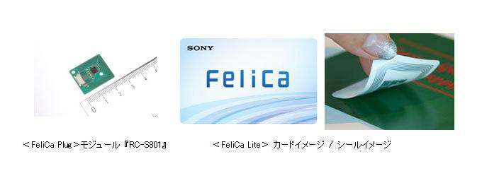 08209986-photo-live-japon-17-10-2015.jpg