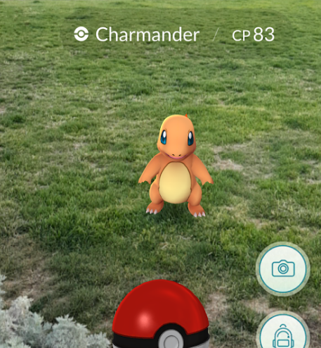 08498462-photo-pokemon-go.jpg