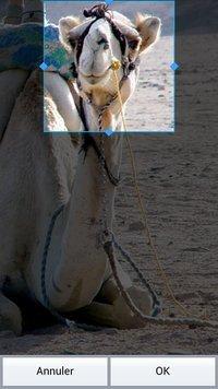 00c8000005314390-photo-test-lg-optimus-4x-hd-clubic-com.jpg