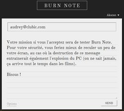 00FA000004919832-photo-burn-note.jpg