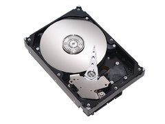 00F0000001777300-photo-disque-dur-seagate-barracuda-160-go-7200-10-plus-sata-ii-2mo-st3160215as.jpg