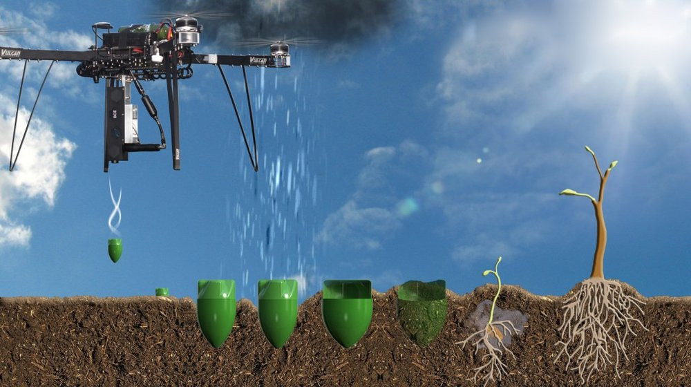 03E8000008018796-photo-plantation-d-arbres-par-des-drones.jpg