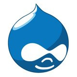 00A0000003892930-photo-drupal-logo-sq-gb.jpg