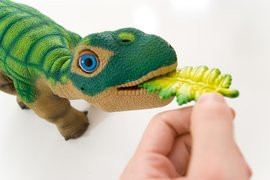 000000B401522494-photo-pleo-robot-dinosaure.jpg