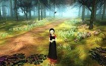 00d2000001776880-photo-the-path.jpg