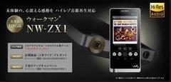 00f0000007012526-photo-live-japon-du-29-12-2013.jpg