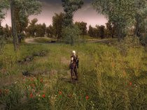 00D2000000339875-photo-the-witcher.jpg