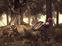 00d2000000339862-photo-the-witcher.jpg