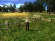 00d2000000339868-photo-the-witcher.jpg