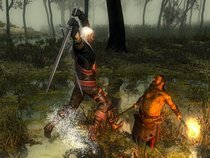 00d2000000339871-photo-the-witcher.jpg