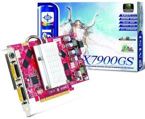 000000F000361243-photo-msi-geforce-7900-gs.jpg