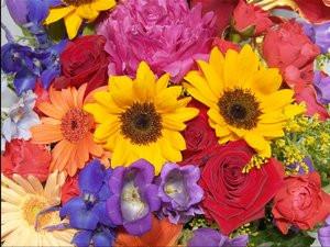 012C000000059300-photo-sony-capteur-ccd-4-couleurs.jpg