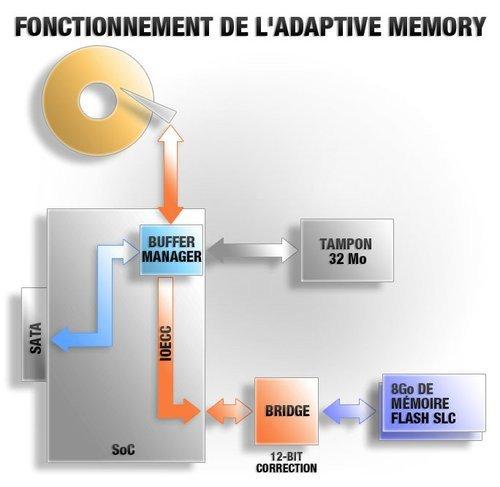 01f4000005196530-photo-adaptive-memory.jpg