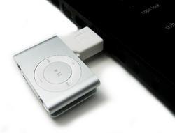 00fa000000411665-photo-incipio-bud-ipod-shuffle.jpg