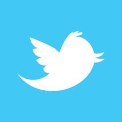 00FA000003830642-photo-logo-twitter-blanc-sur-bleu.jpg