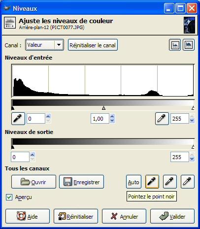 00216981-photo-article-retouche-correction-dominante-niveaux.jpg