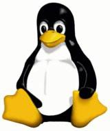000000BE00092171-photo-linux-tux-logo-officiel.jpg