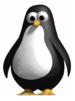 00133921-photo-linux-pingouin-libre.jpg