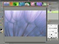 00c8000002432110-photo-the-gimp-concepts.jpg