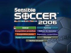 00F0000000312489-photo-sensible-soccer-2006.jpg