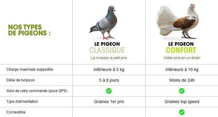 01C2000003066192-photo-ldlc-pigeon-1er-avril.jpg