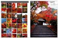 00c8000003762824-photo-live-japon-applications-ipad.jpg