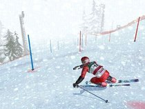 00d2000000201935-photo-ski-racing-2006.jpg