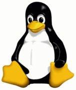 000000b400092171-photo-linux-tux-logo-officiel.jpg