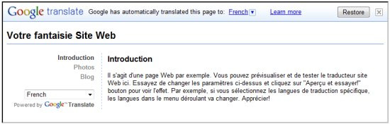02454532-photo-google-translate-pour-webmasters.jpg