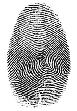 00FA000001862598-photo-fingerprint.jpg