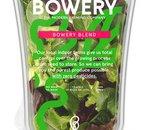 Bowery: l'entreprise qui fait pousser des salades dans un entrepôt géant