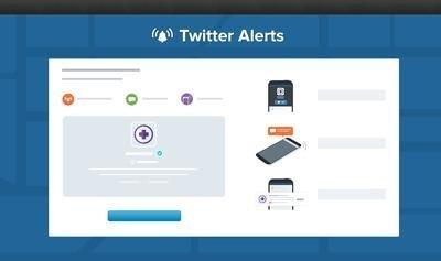 0190000006666822-photo-twitter-alerts.jpg
