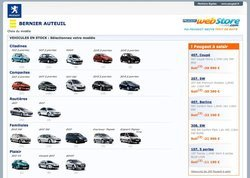 00fa000001834294-photo-peugeot-webstore.jpg