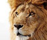 Mac OS X Lion beta : la preview du prochain OS d'Apple