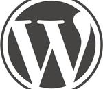 Automattic lève 160 millions de dollars pour Wordpress.com