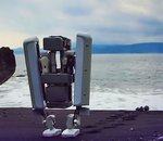 C-LEARN : quand des robots enseignent à d'autres robots