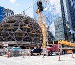 Amazon : sa biosphère géante en images (#rediff)