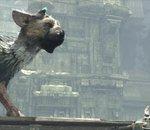 The Last Guardian : les infos à connaître sur le nouveau jeu de la PS4