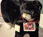 Sony invente un collier pour chat relié à Twitter
