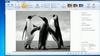 Tutoriel pour bien démarrer avec Windows Essentials 2012