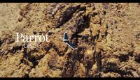Vidéo Parrot DISCO Tutorial 6 Landing